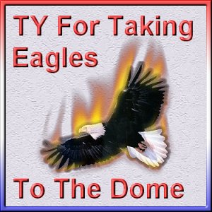eagle_dome_ty.jpg